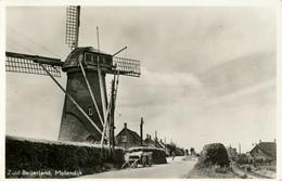 Zuid Beijerland, Landzicht, Molendijk, Korenmolen, Windmill, Real Photo - Watermolens