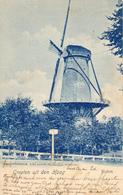Rijswijk, Hoornbrug, Korenmolen, Windmill, Groeten Uit Den Haag - Watermolens