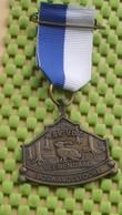 Medaille / Medal - Medaille - Wandelvereniging V.D.Z Veenendaal / Hiking Club V.D.Z Veenendaal - The Netherlands - Pays-Bas
