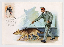 CARTE MAXIMUM CM Card USSR RUSSIA Fauna Dog Militia Police - Cartoline Maximum