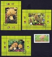 4 Timbres Ou Vignette Champignon Morille - Pilze