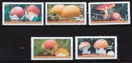 5 Timbres Ou Vignettes Champignon Oronge - Pilze