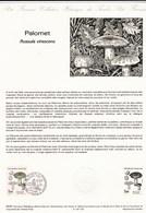 Document 1er Jour Du Timbre Champignon Russule Palomet (verdoyante ) - Pilze