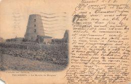 Thumesnil (59) - Le Moulin De Briques - France