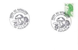 Enveloppe Avec Cachets Commémoratifs Très Bien Frappés Girolle, Cèpe - Pilze