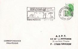 Enveloppe Salon Champignon Avec Cachet Commémoratif - Pilze