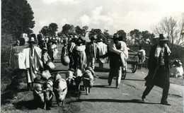 Madagascar  ANTSIRABE En Allant Au Marché De Sabotsy - Madagaskar
