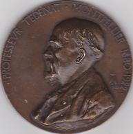 SUPERBE;Médaille PROFESSEUR TEDENAT, Faculté De Médecine De Montpellier 1880-1922 - France