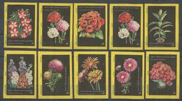 Czechoslovakia , 10 Matchbox Labels - Flowers - Boites D'allumettes - Etiquettes