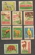 Czechoslovakia 10 Old Matchbox Labels 1961 Year - Boites D'allumettes - Etiquettes