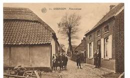 IDDERGEM  Nieuwstraat - Denderleeuw