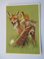 Renard Femme Nue Illustration   N° CPB 313 éditions Au Bord Des Continents - Animals
