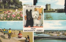 BROUGHTY FERRY MULTI VIEW - Anglesey