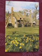 """Great Britain 1968 Postcard """" Anne Hathaway Cottage Shottery Strafford-on-Avon """" Warwick History Slogan To England - Mac - Ver. Königreich"""