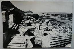 EPHESUS (IZMIR TURKEY) - Serapis Tapinagin Da Bir Gorunus / A View Of Serapis    Nv - Turchia
