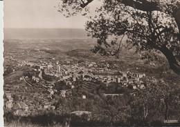 C. P. - PHOTO - VENCE - VUE PANORAMIQUE VERS SAINT LAURENT DU VAR - 03.157.08 - LA CIGOGNE - Vence