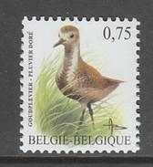 TIMBRE NEUF DE BELGIQUE - OISEAU DE BUZIN : PLUVIER DORE N° Y&T 3259 - Oiseaux