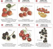 6 CARTES DU JEU DE 7 FAMILLES FAMILLE DES FRUITS ROUGES FRAISE FRAMBOISE GROSEILLE MURE CERISE  CIDOUX JUS DE FRUITS - Cartes à Jouer Classiques