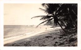 R099384 Trinidad Beach. Perrira - Cartes Postales