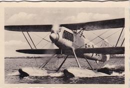 10 Sammelbilder Mit Heinkel Seeflugzeuge - Alte Papiere