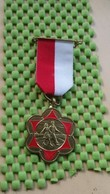 Medaille / Medal - Medaille - Enschedse Wandel Bond 11-5-1985  - The Netherlands - Nederland