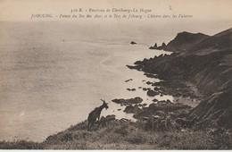 C P A - ENVIRONS DE CHERBOURG LA HAGUE - JOBOURG - POINTE DU BEC DES ANES ET LE NEZ DE JOBOURG - CHÈVRES DANS LES FALAIS - Francia