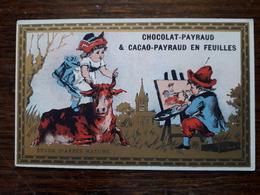 L16/40 Chromo. Chocolat Et Cacao Payraud . Etude D'apres Nature - Chocolate