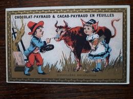 L16/41 Chromo. Chocolat Et Cacao Payraud . Singuliere Recreation - Chocolate