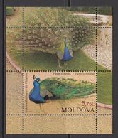 1997 Moldova Peacock Birds Oiseaux Zoo Souvenir Sheet   MNH - Paons