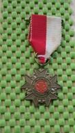 Medaille / Medal - Medaille - Avondvierdaagse 5 Maal - Enschede - The Netherlands - Nederland