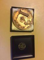 Medaglia Grande Modulo Lions Club Pisa Piazza Dei Miracoli Torre Pendente Piazza Dei Cavalieri - Bronzes