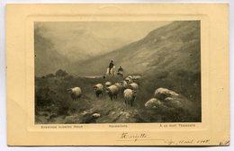 CPA - Carte Postale - Belgique - Fantaisie - Paysage - Moutons - 1910 (M7529) - Elevage