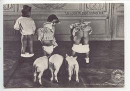 "Naf Naf  ""grand Méchant Looks"" 3 Petits Cochons Enfants - Nu (cp Vierge) Françoise Huguier Photographe - Werbepostkarten"