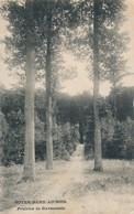 CPA - Belgique -  Overijse - Notre-Dame-au-Bois - Prairies De Ravenstein - Overijse