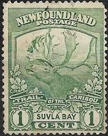 NEWFOUNDLAND 1919 Newfoundland Contingent - 1c Caribou FU - 1908-1947