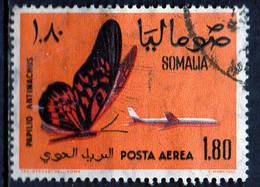 PIA - SOMALIA - 1961: Farfalla : Papilio Antimachus  - (Yv  P.A. 11) - Somalie (1960-...)