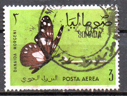 PIA - SOMALIA - 1961: Farfalla : Danaida Morgeni  - (Yv  P.A. 12) - Somalia (1960-...)