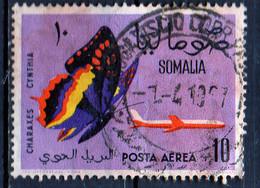 PIA - SOMALIA - 1961: Farfalla : Charaxes  Cinthia  - (Yv  P.A. 14) - Somalia (1960-...)