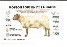 MOUTON ROUSSIN DE LA HAGUE - Veeteelt