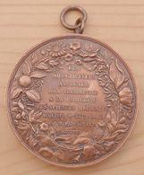 DB-068  Superbe Médaille Ancienne Cuivre Rouge (1824) , Signée Barre Sculp Et Guérin Pinx Sciences Médicales Au XIX E - Bronzes