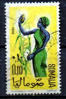 PIA - SOMALIA - 1961: Indigena Che Raccoglie Il Sorgho     - (Yv  10) - Somalie (1960-...)