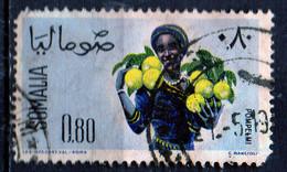 PIA - SOMALIA - 1961: Indigena Che Raccoglie Pompelmi    - (Yv  16) - Somalie (1960-...)
