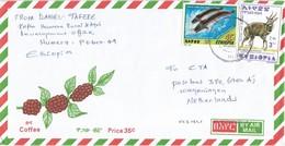 Ethiopia 2002 Humera Freshwater Catfish Bushbuck Cover - Ethiopië