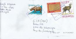 Ethiopia 2007 Saris Addisu Sefer Sabean Writing Rhino Bushbuck Cover - Ethiopië