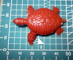 TURTLE TARTARUGA - Turtles