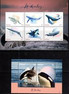 PALAU, 2018,MNH,WHALES, KILLER WHALES, ORCAS, SPERM WHALES, BELUGAS, HUMPBACKS, BULE WHALES, SLT+SS, HIGH FV - Balene