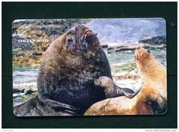 FALKLAND ISLANDS - Chip Phonecard As Scan - Falklandeilanden