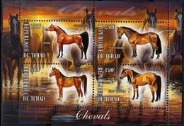 2013 - Chevaux De Race, Arabe, Irlandais, Mustang - BF 4 Val Neufs // Mnh - Chevaux