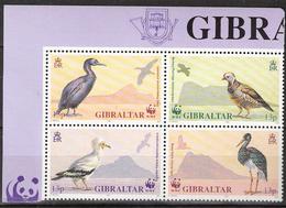 Gibraltar 1991 Worldwide Conservation: Birds, Shag, Barbary Partridge, Vulture, Black Stork   Mi 619-622 Bloc MNH(**) - Gibraltar