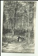 70 - Haute Saone - Montigny - Ruines De Cherlieu - La Fontaine Les Moines - - Autres Communes